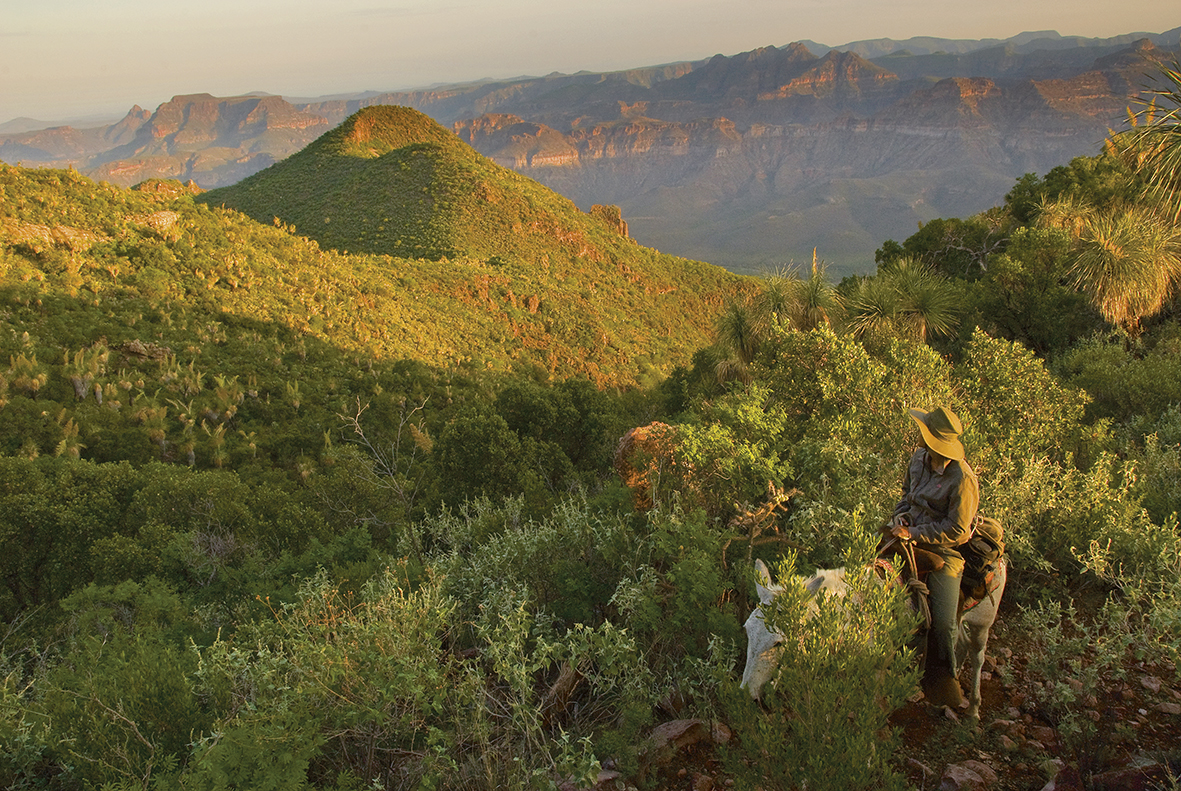 Techumbres de Sierra de Guadalupe
