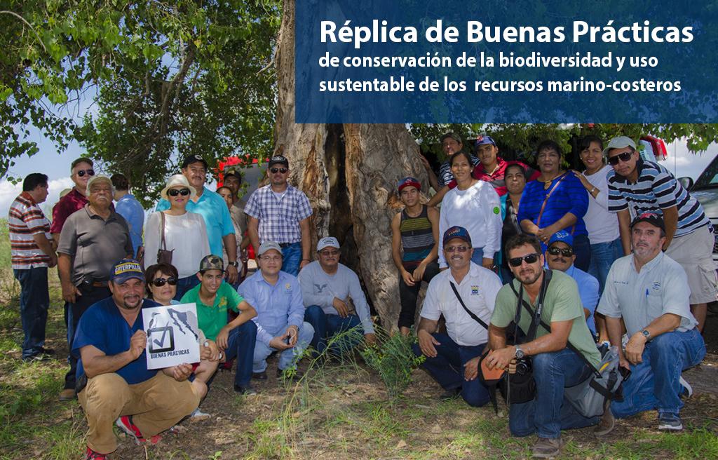 Replica_BP