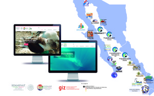 poster_portales_golfo_california_horizontal
